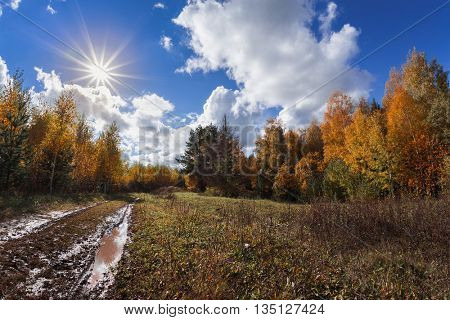Muddy autumn road through forest and blue sky with clouds and sun
