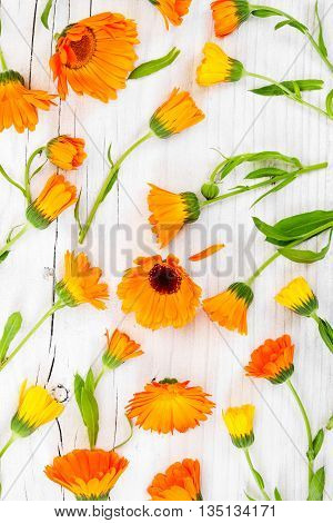 Flat Lay Composition With Flowers Calendula On Rustic Wooden Background.