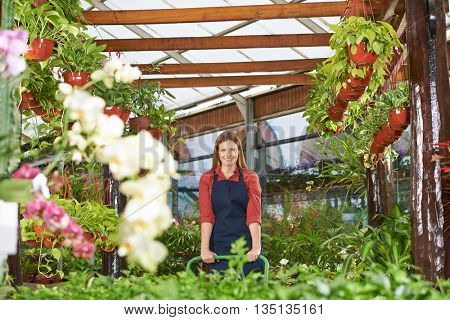 Smiling gardener with apron working in a nursery shop