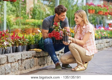 Smiling woman talking to gardener in garden center about different flowers