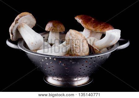 Delicious boletus mushrooms isolated on black background. Culinary mushroom eating.