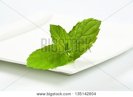 close up of lemon balm leaves on white square plate