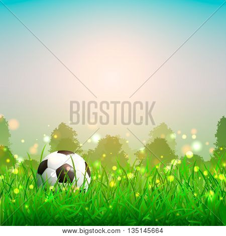soccer ball on the grass. Beautiful summer background