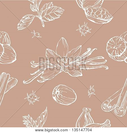 Vector seamless pattern with herbs and spices. Modern stylish texture. Repeating abstract background.