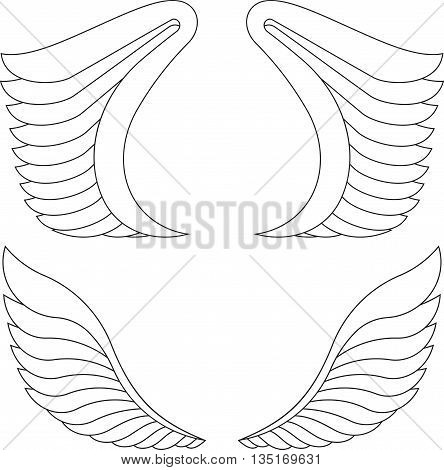 Two pairs of outlined vector wings on a white.