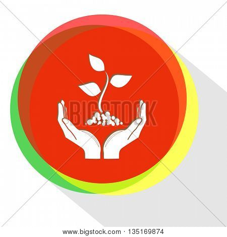 plant in hands. Internet template. Vector icon.