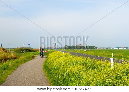 Man With His Dog At The Bike