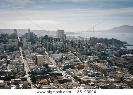 View From The Coit Tower In San Francisco, California.