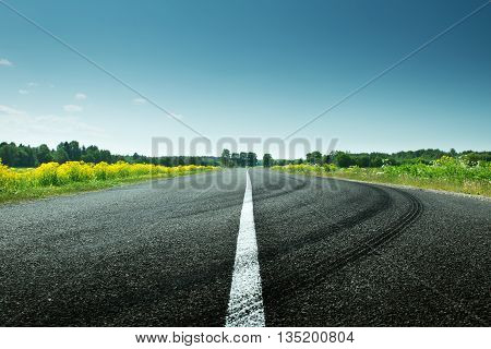 asphalt road view in countryside on sunny spring day