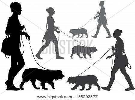 A woman walking with a dog on a leash. Silhouette on a white background.