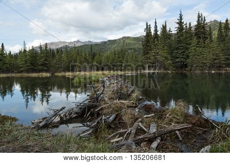 Horseshoe Lake in Denali National Park and Preserve