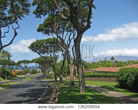 Upscale residential neighborhood in Maui Hawaii near the beach for retirement