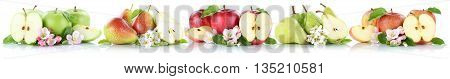 Apple And Pear Collection Apples Pears Fruit Sliced In A Row Fruits Isolated
