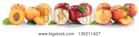 Peach Nectarine Apricot Slice Half Fruit Fresh Fruits Isolated On White