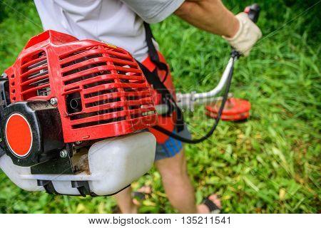 gardener mows the weeds in my garden