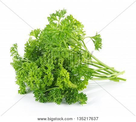 Closeup parsley isolated on white background. parsley