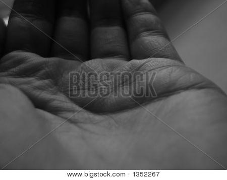 Humble Hand