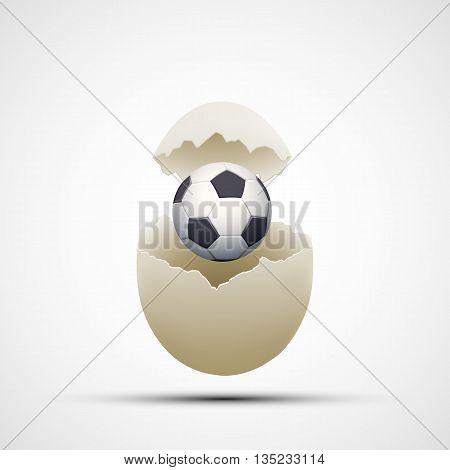 Soccer ball in a chicken egg. Stock vector illustration.