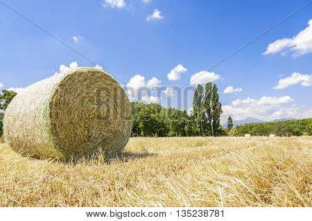 Rural landscape.Harvested field with straw bales in summer.