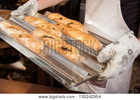 baker concept. closeup of some baguettes or bread rolls on a tray in bakery. Fresh baguettes with olive