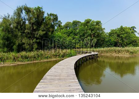 Wooden path with lake