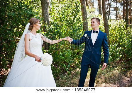 Lovely Wedding Couple At Sunny Day On Pine Wood Forest