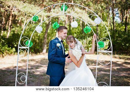 Lovely Wedding Couple At Sunny Day On Pine Wood Near Decor Wedding Arch
