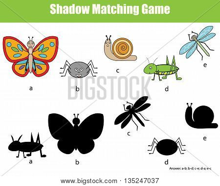 Shadow matching children educational game. Find the right shadow task for kids. Find the correct shadow for insects