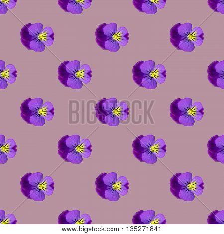 Seamless Repeat Pattern Of Pansies