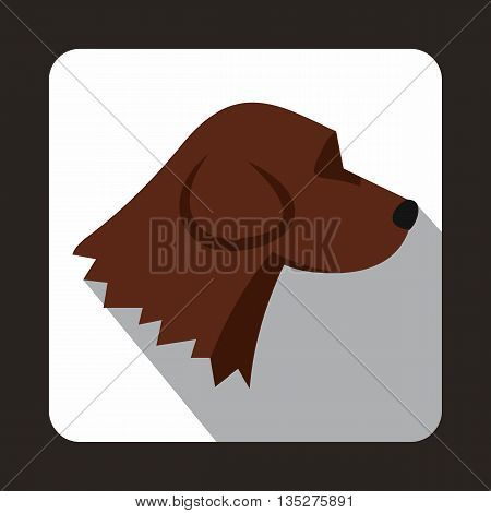 Beagle dog icon in flat style with long shadow. Animals symbol