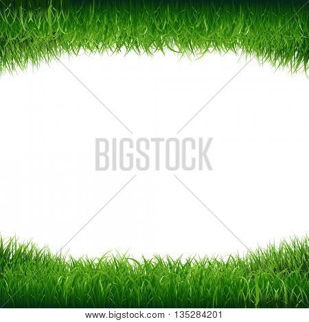 Green Grass Frame, Green Grass Frame, Vector Illustration