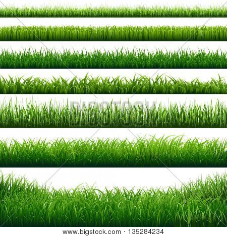 Green Grass Big Borders Set, Vector Illustration
