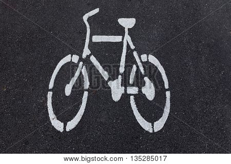 White bicycle sign on asphalt bike lane