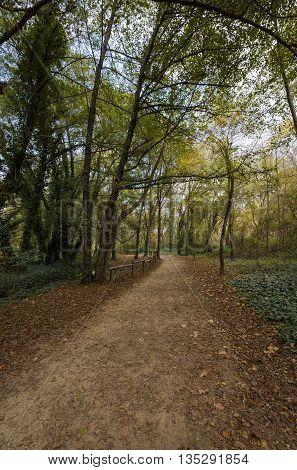 side roads to the lake in Banyoles Girona Spain