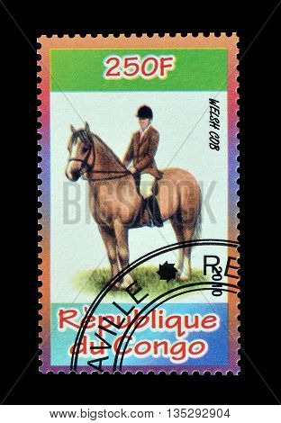 CONGO - CIRCA 2010 : Cancelled postage stamp printed by Congo, that shows Welsh Cob.