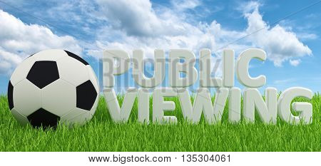 Single soccer ball beside public viewing text over green grass with puffy white clouds in background. 3d Rendering.