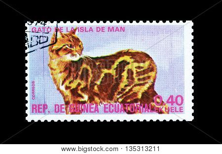 EQUATORIAL GUINEA - CIRCA  1974 : Cancelled postage stamp printed by Equatorial Guinea, that shows Manx cat.