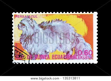 EQUATORIAL GUINEA - CIRCA  1974 : Cancelled postage stamp printed by Equatorial Guinea, that shows Persian blue cat.