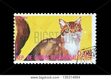 EQUATORIAL GUINEA - CIRCA  1974 : Cancelled postage stamp printed by Equatorial Guinea, that shows Tabby cat.