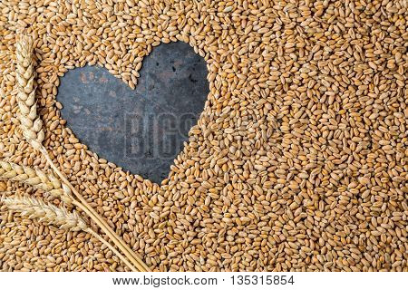 Love harvest Heart on ripe golden seeds of wheat on metal grey background copy space frame top view