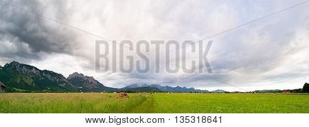 Green Valley in the German Alps with a chain of mountain peaks on the horizon. Meadow and Field in Bavaria, toned photo