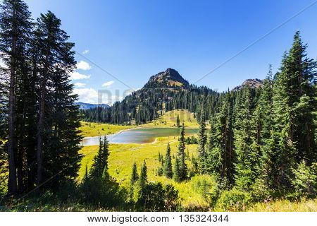 Picturesque Mountains in summer time