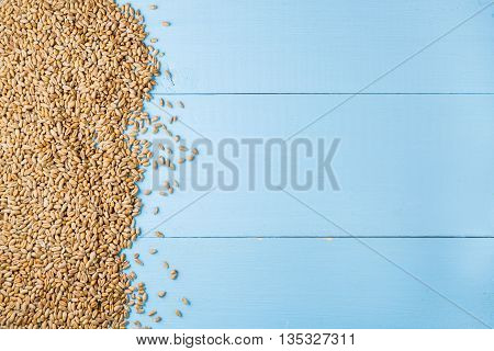 Golden seeds of ripe wheat on blue wooden background harvest background copy space