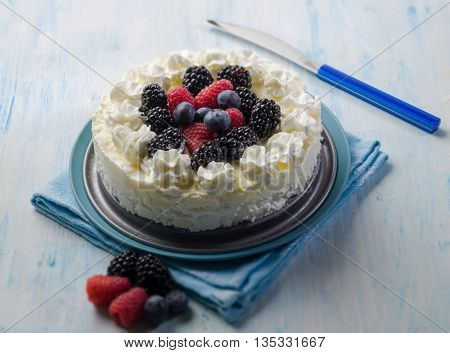 ice cream cake with mix berries, selective focus