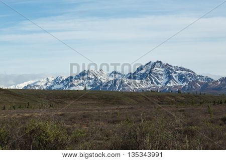 View of the mountains of Denali National Park