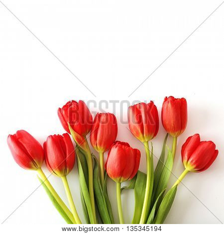 springflowers tulips in a bouquet arrangement, on white