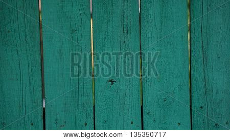 background tree texture of the wooden fence blue nails with openings