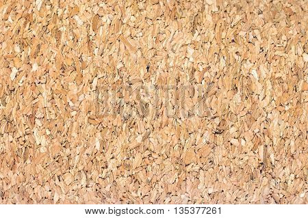 Old wooden board bagasse texture and background