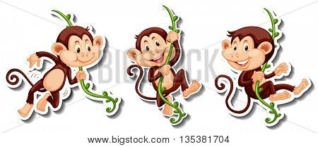 Stickers of monkeys hanging on vine illustration