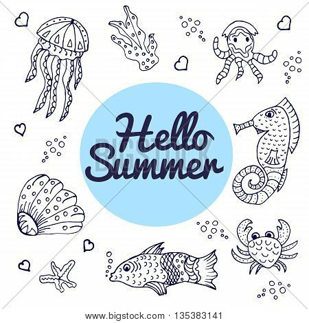 Marine Life Sea Animals Hand Drawn Vector Illustration. Sea Collection. Summer Time